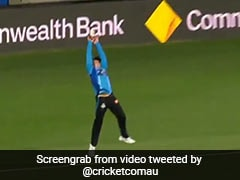 Watch: Adelaide Strikers' Bridget Patterson Takes Jaw-Dropping Catch During WBBL Game
