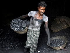 Centre Tweaks Policy To Use Biomass Pellets In Coal-Fired Power Plants