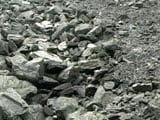 """Video : """"Coal India Mine Managers Were Used For Swachh Bharat"""": Former Coal Secretary"""