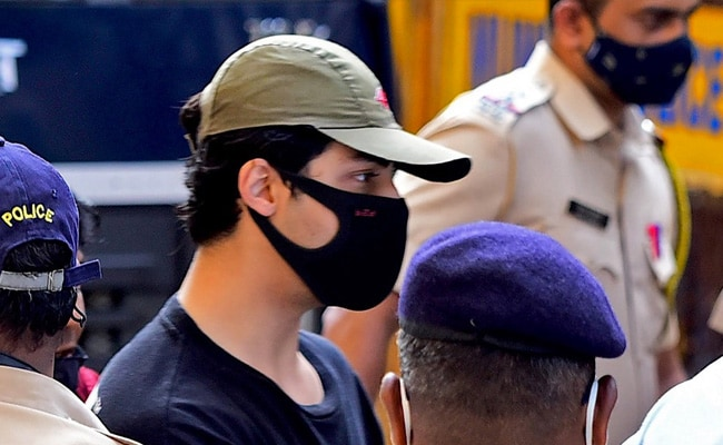10 Arguments Made By Aryan Khan In Court For Bail