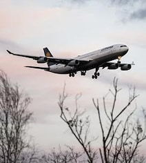 Airplane Drops Human Waste On Man While Flying Over His Garden