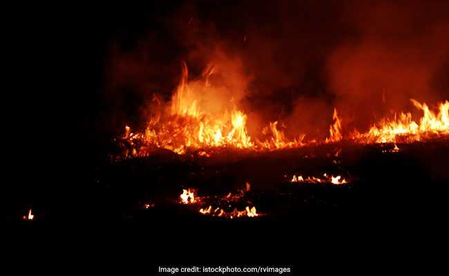Man Who Allegedly Set 18 Vehicles On Fire Arrested In Delhi