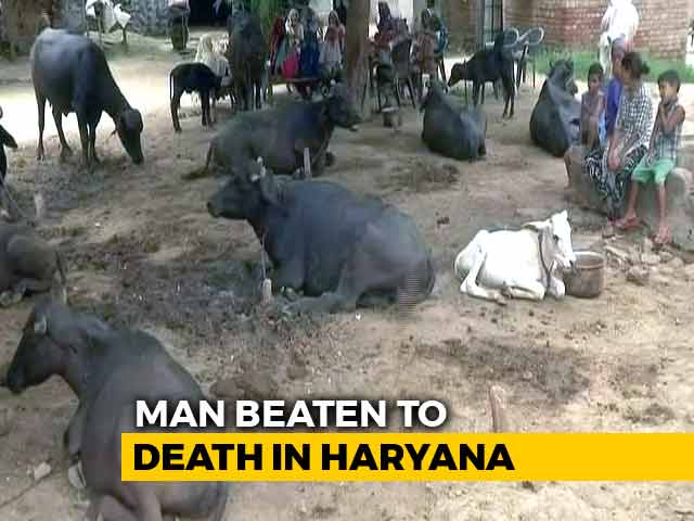 Video : Man Beaten To Death In Haryana Over Suspicion Of Cattle Theft