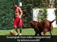 Lionel Messi ने कुत्ते के साथ खेला फुटबॉल, नहीं पकड़ सका बॉल तो दिखाया ऐसे गुस्सा, Viral Video