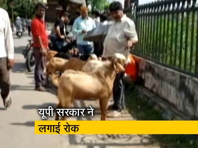 Videos : उत्तर प्रदेश: खुले में कुर्बानी, फोटो पर रोक