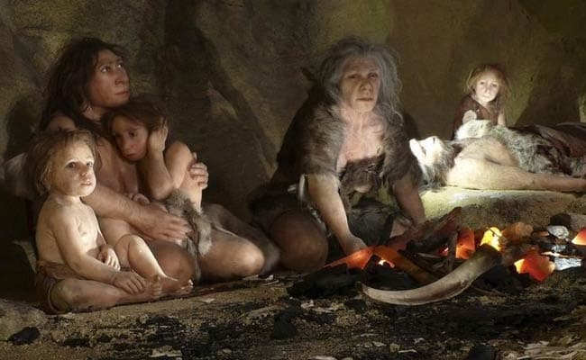 Neanderthals Also Had 'Surfer's Ear', Suggesting They Liked Fish