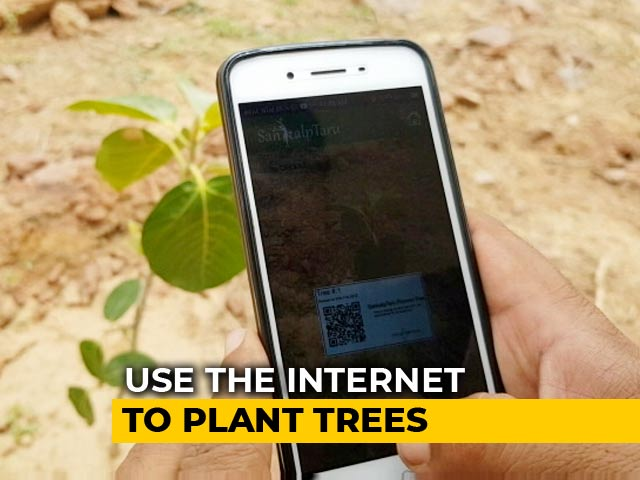 Video : This NGO Helps People Plant Trees Virtually