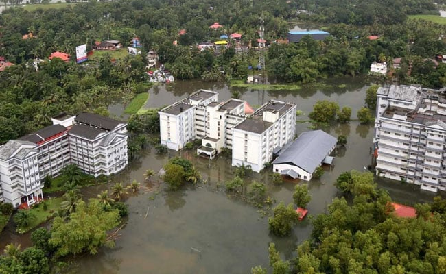 Kerala To Assess Impact Of Floods On Biodiversity: Chief Minister