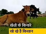 Video : उत्तर प्रदेश : आवारा पशुओं की वजह से किसान परेशान