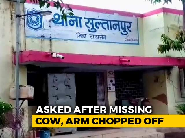 Video : Man Tied To Tree, Arm Chopped Off In Fight Over Cows In Madhya Pradesh