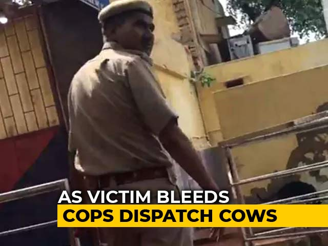 "Video : ""Punish Me"": Rajasthan Cop Admits Delay In Taking Mob Victim To Hospital"