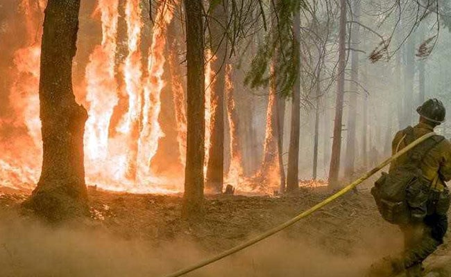 Over 100 Large Wildfires Now Raging Throughout US As New Blazes Erupt