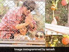 अबराम नहीं फोड़ पाए दही-हांडी तो पापा शाहरुख खान को खुद उतरना पड़ा मैदान में- देखें Video