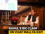 Video : Vijay Mallya Met BJP Leaders Before Leaving India, Says Rahul Gandhi