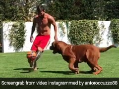Lionel Messi Messing With His Dog In Adorable Video Is A Must See Today