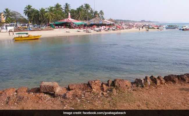 Poisonous, Jellyfish-Like Marine Organism, Spotted At Goa's Baga Beach