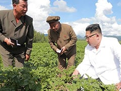 Was Kim Jong Un Too Busy Visiting Potato Farm To Meet Mike Pompeo?