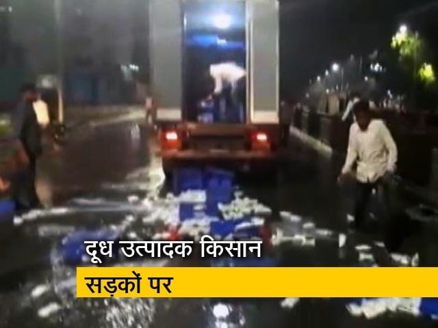 Videos : महाराष्ट्र में दूध उत्पादक किसान उतरे सड़कों पर, न्यूनतम कीमत 27 रुपये प्रति लीटर करने की मांग