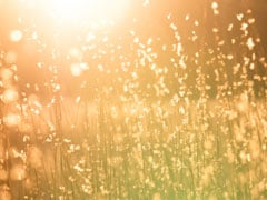 Sitting In The Sun May Lift Your Mood; Know How Much Exposure To Sun Is Safe