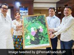 New Flower Species Named After Former Arunachal Chief Minister