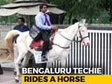 Video: Bengaluru Techie Rides Horse To Work On Last Day To Protest Traffic