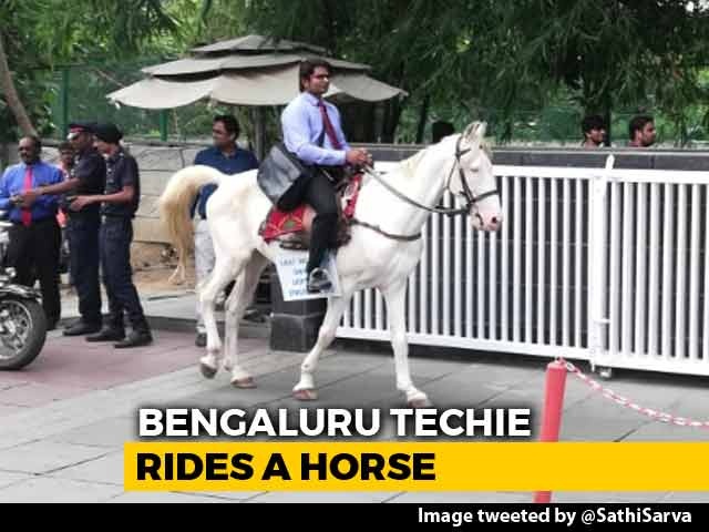 Video : Bengaluru Techie Rides Horse To Work On Last Day To Protest Traffic