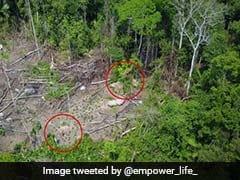 ड्रोन ने खोजी जंगलों के बीच नई जनजाति, दुनिया से नहीं है कोई संपर्क, जी रहे हैं ऐसे