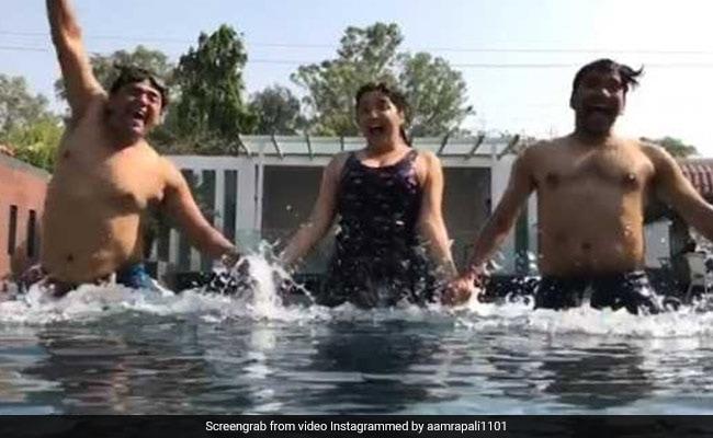 निरहुआ और रवि किशन संग पूल में यूं मस्ती करती नजर आईं आम्रपाली दुबे, वीडियो हुआ Viral