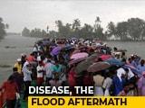 Video : 'Rat Fever' Cases Rise After Kerala Floods,12 Dead Since August 1