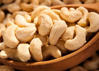 5 Best Cashew Nut Options To Add To Your Daily Diet