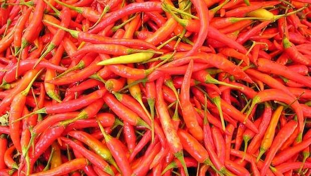 chili generic