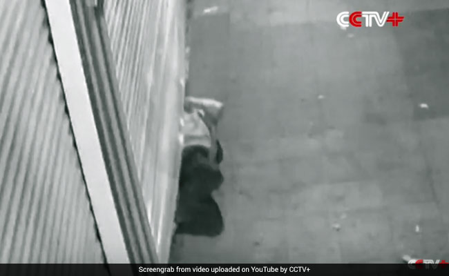 Video: Thief Squeezes Through Store Shutter. Jewellery Worth $53,000 Gone