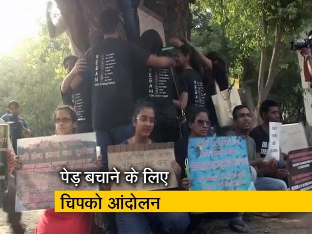 Videos : दिल्ली में विकास के नाम हजारों पेड़ों की शामत
