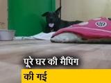Video : सिटी सेंटर: 11 मौतों के सबूत खंगालती पुलिस, मुंबई के समंदर से तीन लड़कों के शव मिले