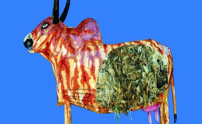 cow installation gujarat