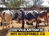 "Video : ""Cow Vigilantism Unacceptable, Don't Link Victims To Religion"": Top Court"