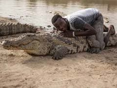 Sacred Snappers: In This African Village, People Sit, Lie On Crocodiles