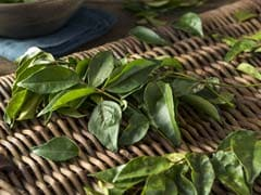 Curry Leaves Promote Gut Health, Manage Diabetes And More - Study (Curry Leaves Recipes Inside)