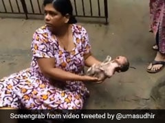 Cries Led Her To Baby In Chennai Drain. Rescue On Video