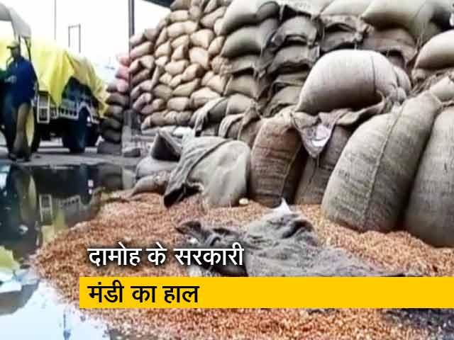 Video : किसानों पर सरकारी सिस्टम की मार, बारिश में भीगा हज़ारों क्विंटल चना