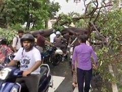 उत्तराखंड :  देहरादून में जबरदस्त बारिश से हालात खराब, नदी में बही कारें