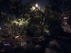 Huge Late-Night Storm Hits Delhi And Suburbs; Trees Uprooted