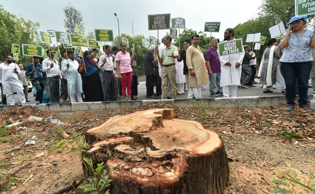 Safdarjung Residents Hold Protest March To Save Trees In Delhi