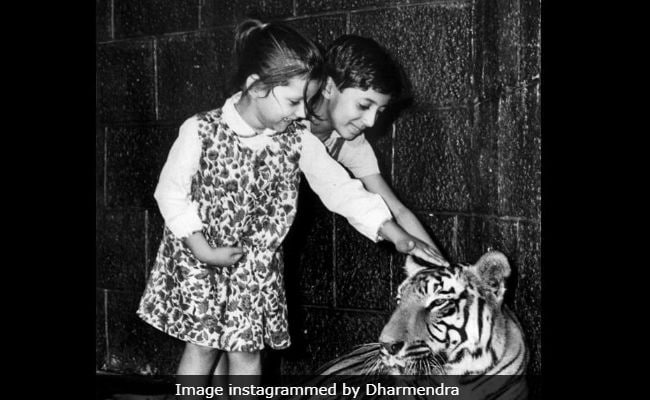 Seen Sunny Deol's Childhood Pic With His Sister Lali Yet?