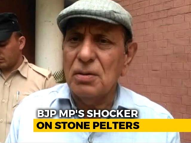 "Video : ""Stone-Pelters Must Be Shot Dead"": BJP Lawmaker On Centre's Kashmir Move"