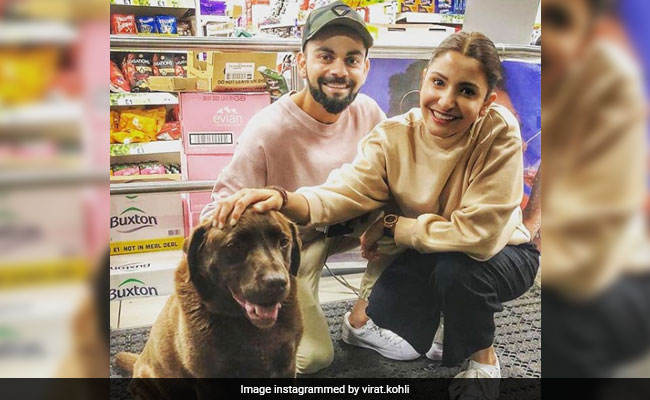 How Sweet Is Virat Kohli And Anushka Sharma's Photo With New Friend