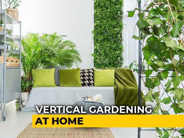Video : Goodbye Pollution, Hello Greenery: 4 Step Guide On How To Do Vertical Gardening