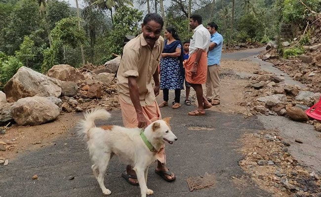 How A Pet Dog Saved Its Family In Flood-Hit Kerala