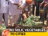 Video : Farmers' Stir Pushes Vegetable Prices, Supply Hit In Rajasthan