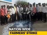 Video : Farmers Begin 10-Day Protest; Milk, Vegetable Supply To Be Affected